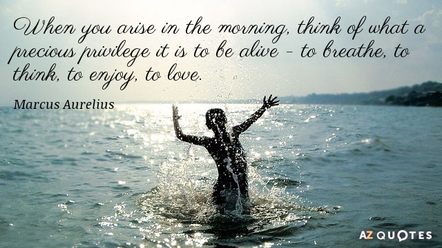 Quotation-Marcus-Aurelius-When-you-arise-in-the-morning-think-of-what-a-1-30-30