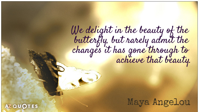 Quotation-Maya-Angelou-We-delight-in-the-beauty-of-the-butterfly-but-rarely-36-62-76